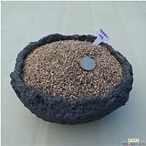세립6.7kg수제세척마사토|