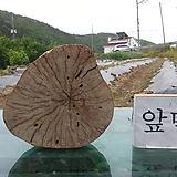 통나무슬라이스(먹감나무)0518xp-3|