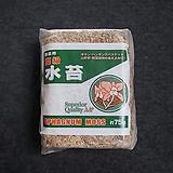 천연 고급수태 AA+ 소포장 토피어리 풍란 난 재배용 75g|