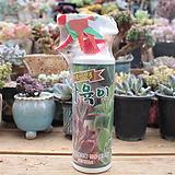 친환경 다육식물전용보호제 