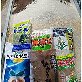 일본미인-자연한몸