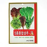 5종혼합상추 씨앗 식용식물 씨앗 채소|