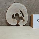 통나무슬라이스(박쥐란헌팅트로피,틸란드시아용)0607spxp1|Tillandsia