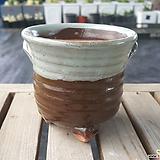 국산수제화분1157|Handmade Flower pot