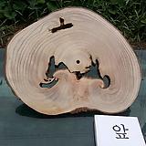 우드슬라이스(틸란드시아펜던트,기타원예자재용)0520spxp6|Tillandsia