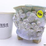 수제화분(반값특가) 1569 Handmade Flower pot