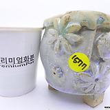수제화분(반값특가) 1577 Handmade Flower pot