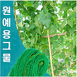 가든네트 넝쿨식물재배용 식물커튼 그린커튼 원예용그물 덩굴식물용그물/원예자재|