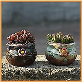 이오스[200~210] 다육이화분 인테리어화분 수제화분 행복한꽃그릇 행복상회|Handmade Flower pot