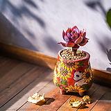 W205팬더 시즌오브시즌 다육이화분 인테리어화분 수제화분 행복상회 행복한꽃그릇|