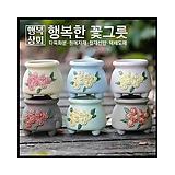 수제화분모모Ⅱ다육화분 인테리어화분 다육이화분 행복상회 행복한꽃그릇|Handmade Flower pot
