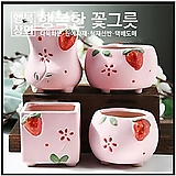 수제화분요정핑크다육화분/인테리어화분/다육이화분/행복상회/행복한꽃그릇|Handmade Flower pot