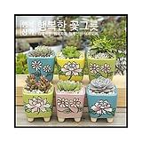 수제화분가을국다육화분/인테리어화분/다육이화분/행복상회/행복한꽃그릇|Handmade Flower pot