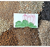 최상급 분갈이흙<용토>|
