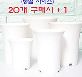 [화이트] 수입 원형 슬림 플라스틱 화분 (S,M,L,XL,XXL) 플분|