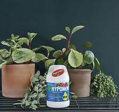 식물영양제 하이포넥스 하이그레이드 원액 비료|
