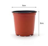 대량납품 농장화분 재배분 이색포트화분 플라스틱화분 화분 모종화분 씨앗화분 재배용포트 재배분 재배용화분 다육화분|