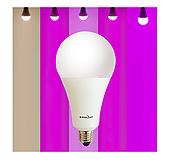 빛솔 식물 LED전구 5종 생장용 10W 15W (E26base)|