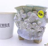수제화분(반값특가) 1569|Handmade Flower pot