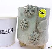 수제화분(반값특가) 1571|Handmade Flower pot