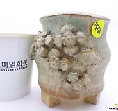 수제화분(반값특가) 1575|Handmade Flower pot