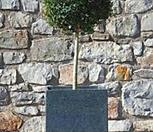 벅스볼트리 토피어리 럭셔리 특품 #2♥유럽 직수입♥|
