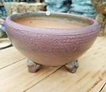 수제화분(50)|Handmade Flower pot
