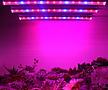 다육이 월동준비♥튜브 타입 LED 세트♥식물생장 LED♥다육이등 다육
