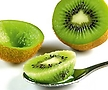 자가수정 제니 키위나무 화분상품♥그린키위♥혼자서도 열매 맺어요.||