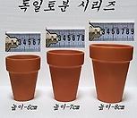 독일토분[7-9cm]