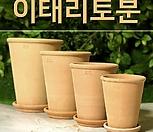 이태리토분 바소가르다(롱분/꼬깔토분)13,15,18,21