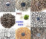 분갈이흙 다모여 01-용토 소립 중립 대립 마사 퍼라이트 질석 리톱스다육이분갈이흙화분