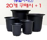 수입 플라스틱 NEW 라운드 화분 (코노피튬/리톱스/하월시아)