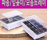 파종/잎꽂이/모종트레이