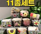 수제화분 패랭이(11종세트)