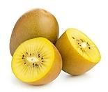 골드키위트리 화분상품 암그루 수그루♥키위 키위나무 골드키위나무