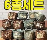 수제화분 토리4(미니화분) 6종세트