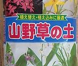 산야초 대포장