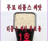 리톱스씨앗 복토용 1호