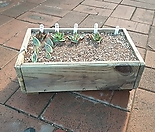 방부목 화분밭30cm