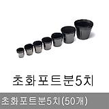 하월시아 슬릿 플라스틱 화분