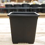 물결사각플라스틱화분10cm(10+1)