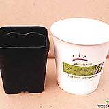 원형플분 5호(14.8cm) 플라스틱화분 포트 다육이화분 원예용 프라스틱화분