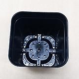 플라스틱 미니사각7.5cm화분 - 60개/Box