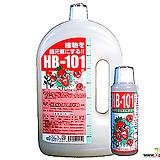 정품 HB-101-1000ml/ 강추 천연물질의 신비한 효과! 다육영양제