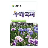 생활백화점种子채소种子꽃씨수레국화种子