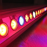 테라(Tera) 다육이 LED
