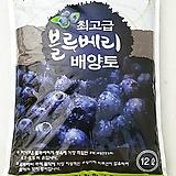 최고급 블루베리 배양토♥전용 피트모스믹스♥12L 35L♥블루베리 흙