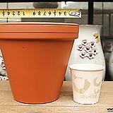 표준독일토분17호(17.5cm)