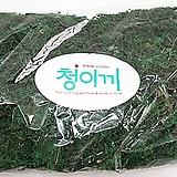 청이끼 / 인조이끼 